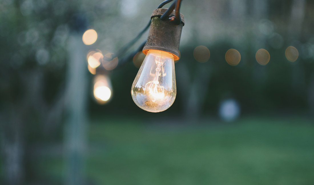 Lightbulb in garden