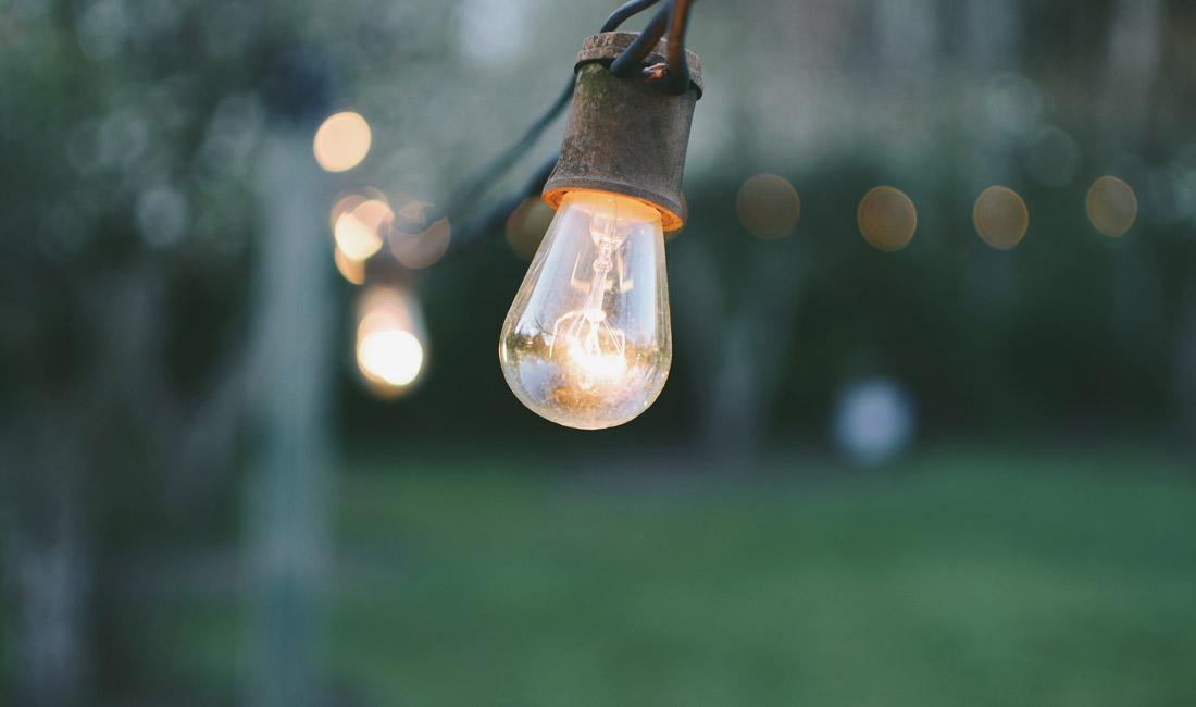 Lightbulb in garden