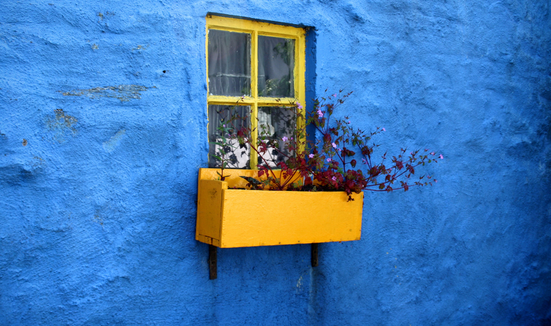Blue house