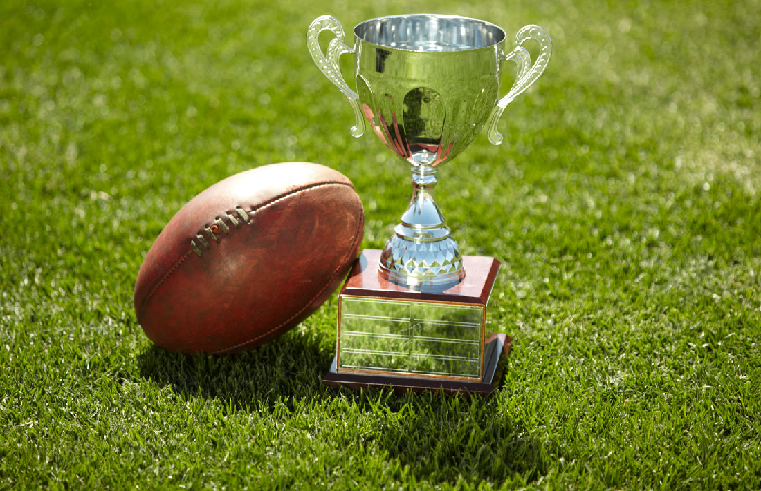 Football and trophy on grass