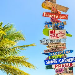 Signpost with names of different cities next to palm tree