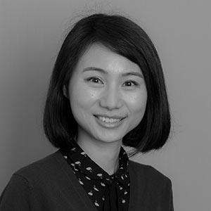 Dr Lan Gao